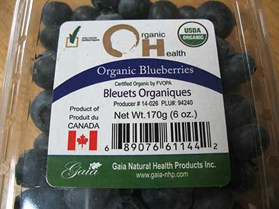 170gram container of blueberries